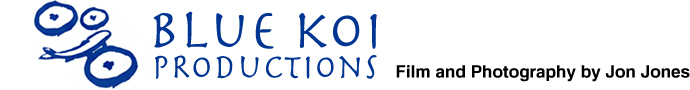 Blue Koi Productions
